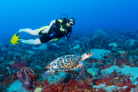 Anse Chastanet - Scuba diving at the resort
